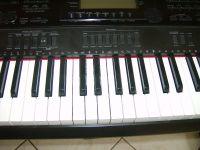 HPIM3312a